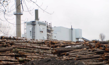Groups Expose UK for Subsidizing Biomass and 'C... | Renewable Energy Cyprus | Scoop.it