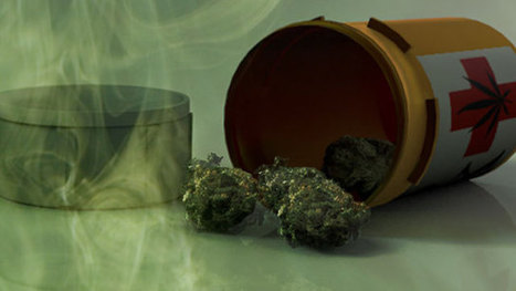 Should medical marijuana be legalized in Florida? | Should Medical marijuana be leaglized in every state. | Scoop.it