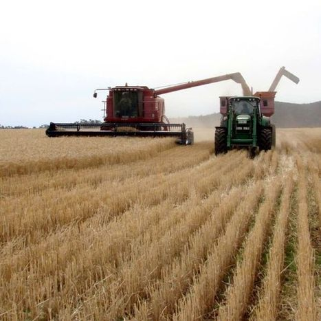 Climate change's effect on crops worse than thought: study | Sustain Our Earth | Scoop.it