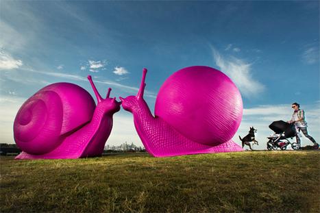 Sydney's Snail Invasion | Innospiration | Scoop.it