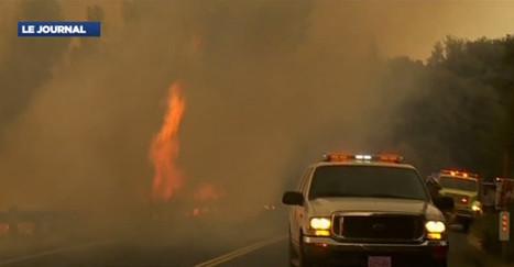 VIDEO. Incendie : état d'urgence à San Francisco, la parc Yosemite menacé - Monde - MYTF1News | AmeriKat | Scoop.it
