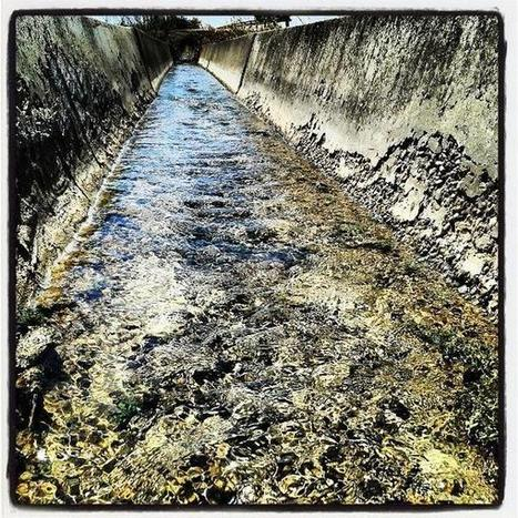 Leyla Orozco on Twitter: #acequia #water #agua #nature http://t.co/ZGZ83h7EZE | La Acequia | Scoop.it
