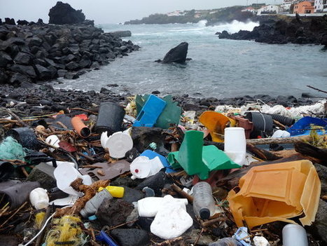 Study Gauges Plastic Levels in Oceans | in plain sight | Scoop.it