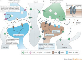 Glycine transporters as novel therapeutic targets in schizophrenia, alcohol dependence and pain : Nature Reviews Drug Discovery : Nature Publishing Group | Neuroscience: Pharmacology & Drug Discovery | Scoop.it