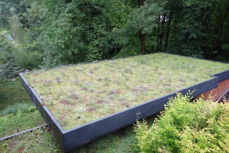 Pour les mordus des toitures végétalisées | Environnement, paysage et biodiversité | Scoop.it