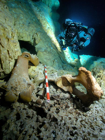 Skull in Underwater Cave May Be Earliest Trace of First Americans | SUBDocument | Scoop.it