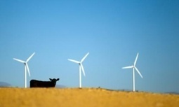 The real villains in #Australia's #renewables debacle? Three big energy companies | John Hewson | Messenger for mother Earth | Scoop.it