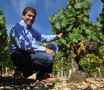 Wine scam rocks Chablis | Autour du vin | Scoop.it