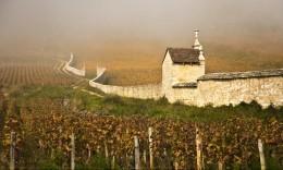 Burgundy's Wine Route | Vitabella Wine Daily Gossip | Scoop.it