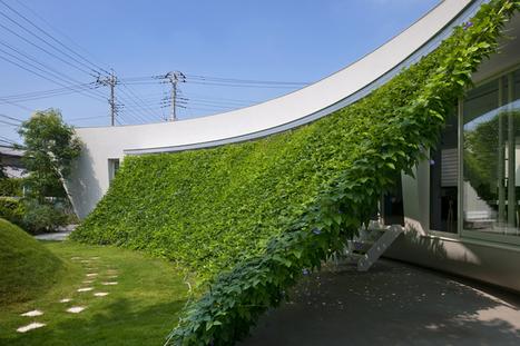 green screen house by hideo kumaki architect office - designboom | architecture & design magazine | Groen leven | Scoop.it