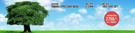 Lotus Greens, Residential Property Yamuna Expressway Greater Noida | Lotus Greens Yamuna Expressway, Greater Noida | Scoop.it