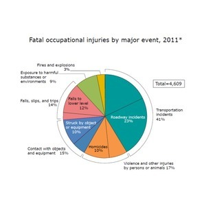 Feds: Workplace violence caused nearly 17 percent of all fatal U.S. work injuries in 2011 | prevent, protect, repair | Scoop.it