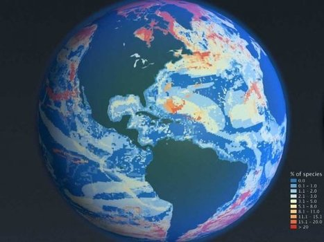 This animated map shows how different our oceans will be by 2050 | Lorraine's Environmental Change &  Management | Scoop.it