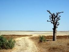 Best Places to Visit in Senegal - Visiting Senegal   Local knowledge for global travellers.   West Africa: Tourism   Scoop.it