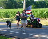 Bunny's Blog: Top Ten Pet Safety Tips for the Fourth of July   Pet News   Scoop.it