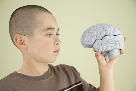 How being poor leads to smaller brains | Poverty | Scoop.it