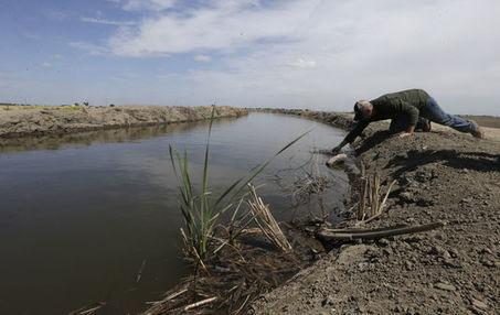 « Les Californiens doivent comprendre que la période d'abondance de l'eau a disparu» | Innovation & énergie | Scoop.it
