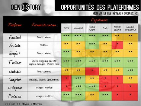 Mon vin et les réseaux #2 : les différentes plateformes pour les vignerons   Communication, Marketing Web&Vin   Scoop.it