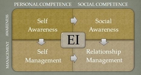 Why Emotional Intelligence Matters in Career Development - Sharon Graham | Global Leadership Coaching by Equanimity Executive | Scoop.it