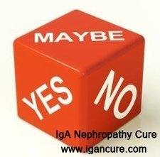 Does Nephrotic Syndrome Cause High Creatinine and High Potassium_IGA Cure   igancure.com   Scoop.it