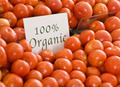 Don't give up on organic food, our experts urge   Climate change challenges   Scoop.it