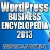 Indiegogo: WordPress Business Encyclopedia 2013 | Innovative Marketing and Crowdfunding | Scoop.it