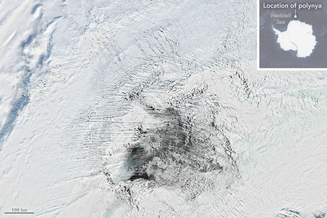 A Polynya Seldom Seen | Conformable Contacts | Scoop.it