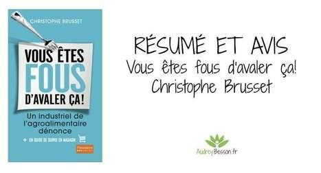 Vous êtes fou d'avaler ça - Christophe Brusset | Détente et bien être | Scoop.it