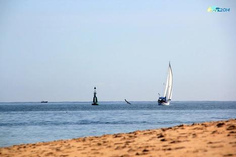 El conocimiento marino como paso previo a una gestión racional de la pesca   MDV 2014   Scoop.it