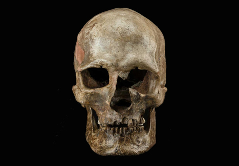 DNA evidence uncovers major upheaval in Europe near end of last Ice Age | cultural anthropology | Scoop.it