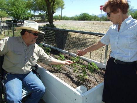 Amado food garden receiving help from across Southern Arizona | CALS in the News | Scoop.it