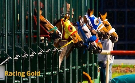 Horse Racing Tipster | Racing Gold - Tipster Warehouse | Sports Betting | Scoop.it