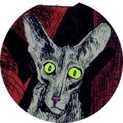 Le chat du rabbin :  Joann Sfar adapte sa BD sur grand écran ! | Bande originale du livre | Scoop.it