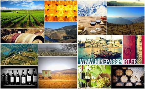 La startup du jour: WinePassport, voyagez et dégustez! | Vin 2.0 | Scoop.it