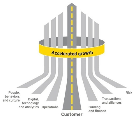 Accelerating growth - The EY 7 Drivers of Growth | Organisation Development | Scoop.it