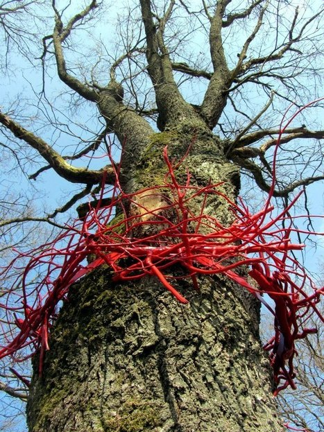 "Wela: ""Crown of Thorns"" 