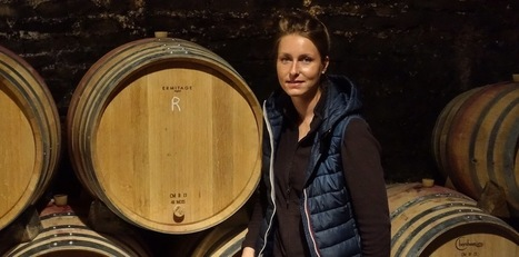 Visit Domaine Grivot - initial impressions of the 2015s | Pinot Post | Scoop.it
