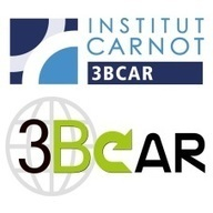 Institut Carnot 3BCAR : Partenaire R&D pour l'innovation des entreprises   Innovation Agro-activités et Bio-industries   Scoop.it