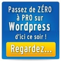 Comment obtenir des taux de conversion plus élevés avec Google Adwords - EmilieTo's Blog | Marketing | Scoop.it
