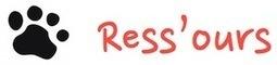 6 infos clé sur le besoin de reconnaissance | Ress'ours | Manager au quotidien | Scoop.it