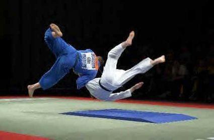 Développement durable, management et Judo ! - Contrepoints | Technologie Robotique et développement durable 3403 | Scoop.it