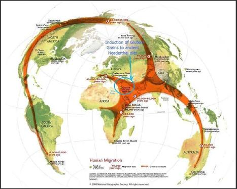 Human migration in history throughout the world | Amazing Science | Scoop.it