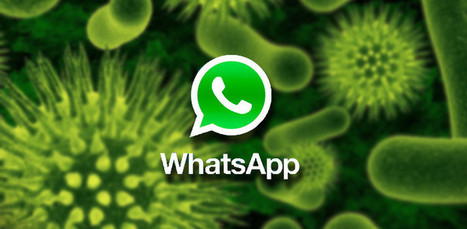 How Android Makes WhatsApp Safer! | | Android Application Development | Scoop.it
