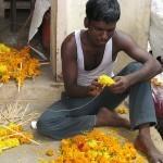 Inde : Malgré le miracle économique, le pays ne réduit pas la faim | Questions de développement ... | Scoop.it