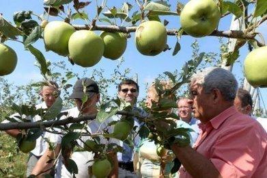 « On découvre des dégâts tous les jours... » | Agriculture en Dordogne | Scoop.it