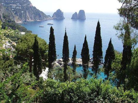 Italian Treasures - Isle Of Capri | binNotes Italy - Wines & Culture | Scoop.it