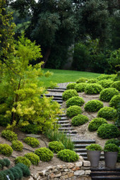 A reliable landscaping contractor, the Mystic Mountain Landscapes | Mystic Mountain Landscapes | Scoop.it