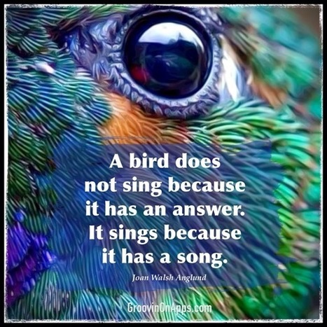 Don't Hold Back Your Bird Song -- Inspiring Life Quote Meme | GroovinOnApps.com | How to Use an iPad Well | Scoop.it