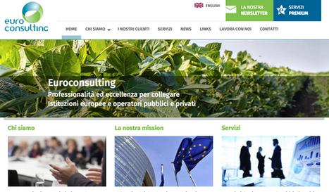 Euroconsulting lancia il suo nuovo sito web | Social Media Press | Scoop.it