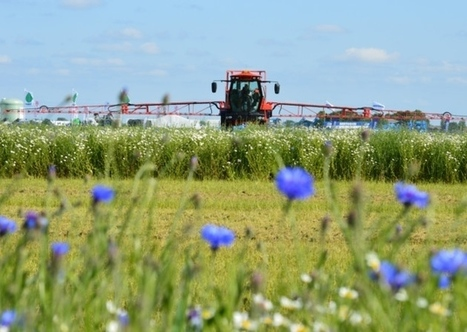 JIC, Rothamsted mentions: Farming's challenges bring efficiency into focus | BIOSCIENCE NEWS | Scoop.it